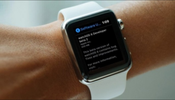 Beta 2 of watchOS 6: We can update the Apple Watch Directly