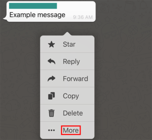 WhatsApp-Group-Chat-Select-Message-More