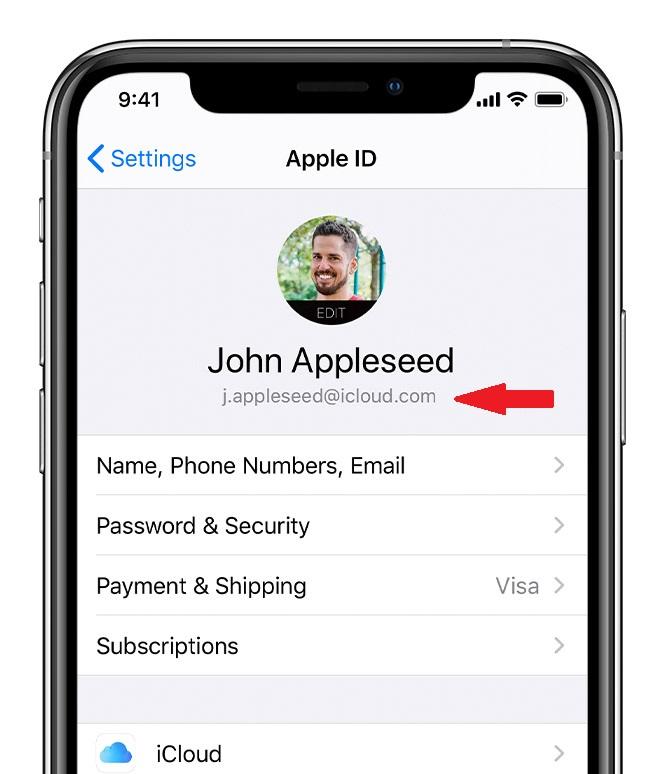 Check Apple ID — iOS