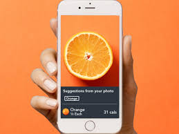 Lose It Best Weight Tracker Apps