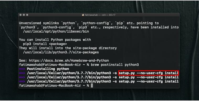 resolve error for pip