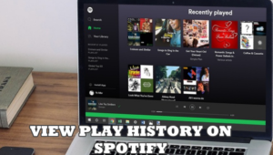 View Play Spotify History